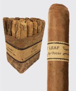 Leaf by Oscar Connecticut Toro Image.