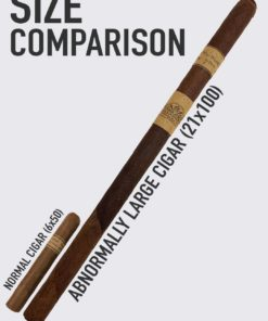 Woody Size Comparison